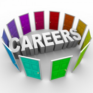 Career Researcher